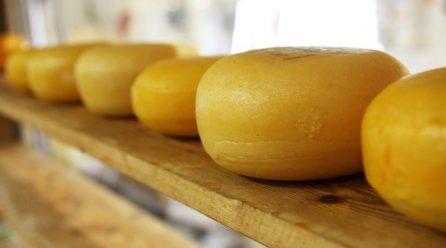 Chcemy dobrego żółtego sera nie produktu seropodobnego!